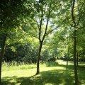 Parc Mouchotte
